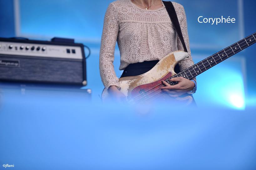 Concert des Pixies 4 juillet 2014 jfl 004