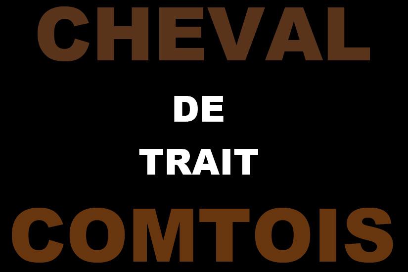 Trait Comtois 01