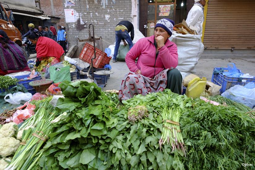 Katmandou pour Site © jflami 015