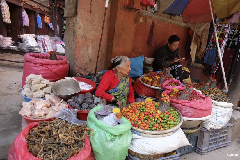 Katmandou pour Site © jflami 018