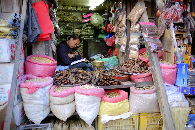 Katmandou pour Site © jflami 009