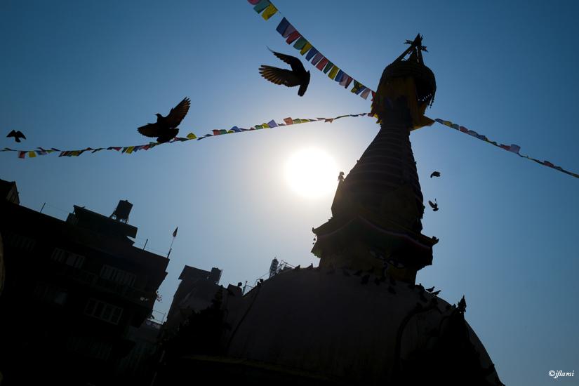 Katmandou pour Site © jflami 029