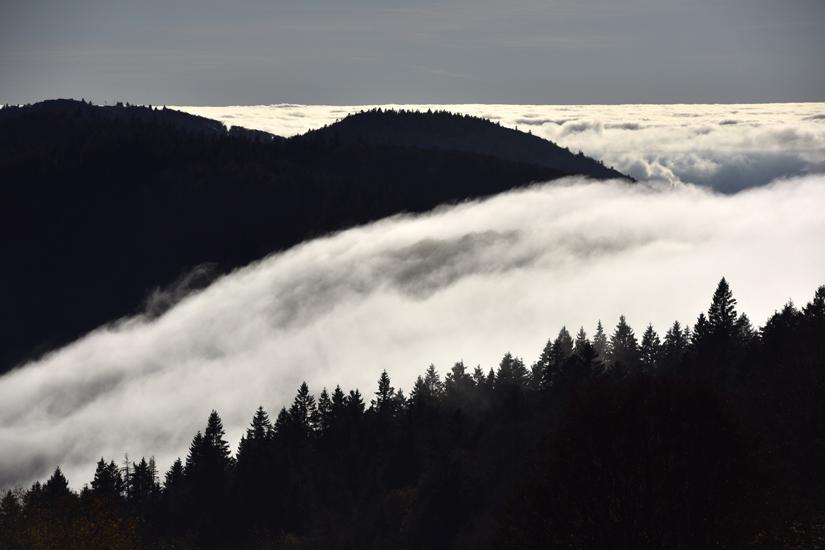 Ballon Alsace et fog jfl 001