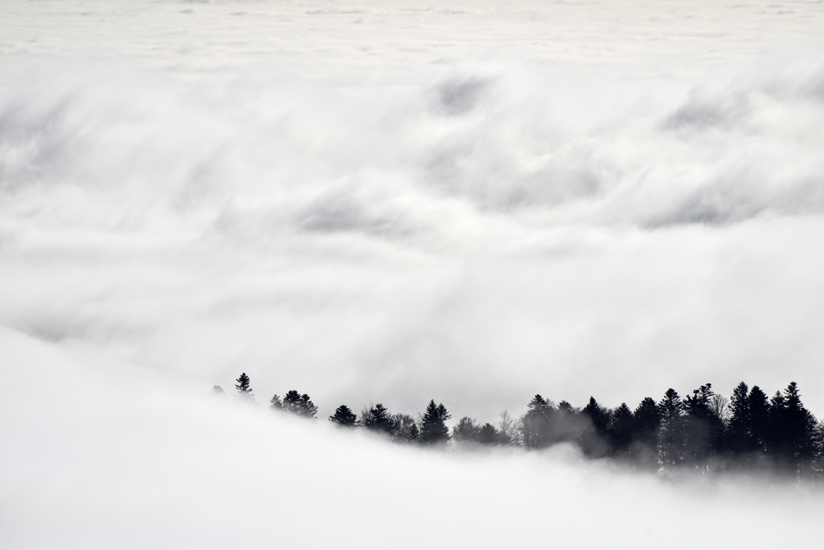 Ballon Alsace et fog jfl 002