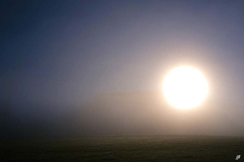 Dans la brume electrique jfl 001