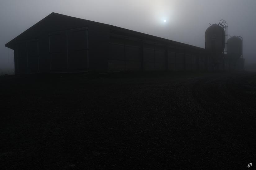 Dans la brume electrique jfl 003