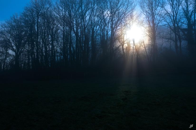 Dans la brume electrique jfl 005