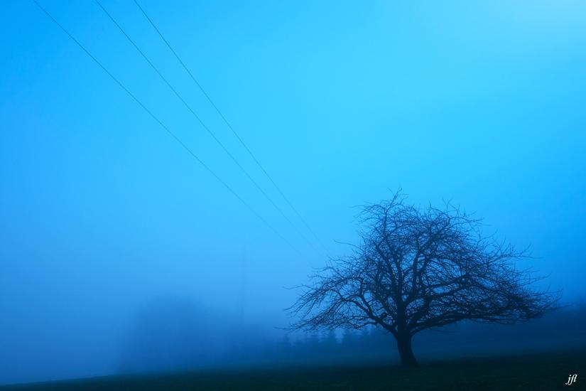 Dans la brume electrique jfl 007