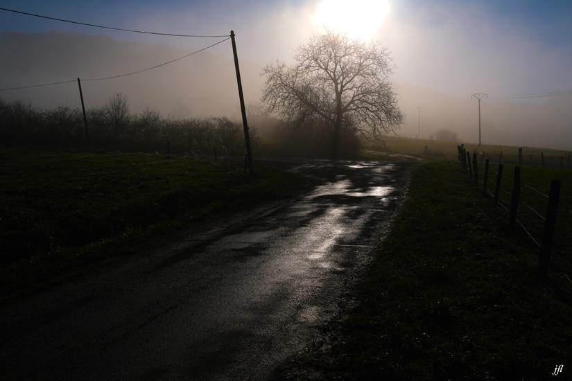 Dans la brume electrique jfl 009
